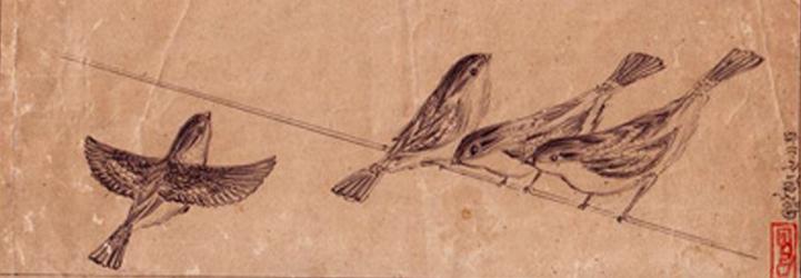 sparrowstorybanner721x250