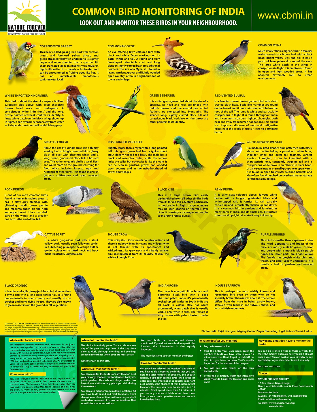 cbmi_bird_poster_Lowres1